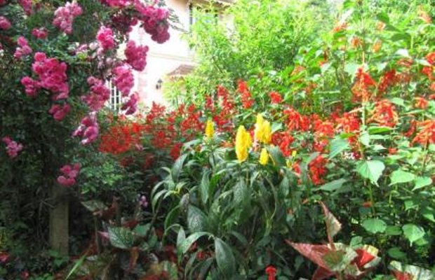 фото Sapa Garden Bed and Breakfast 111960768