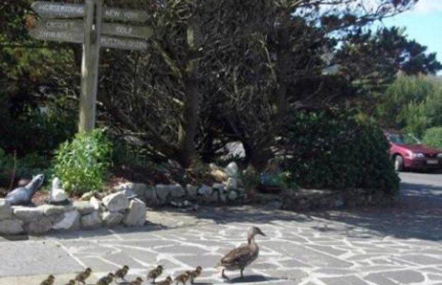 фото Zetland House 144602839