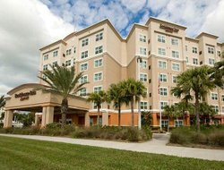 Pets-friendly hotels in Clearwater