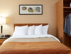 Pets-friendly hotels in Swift Current