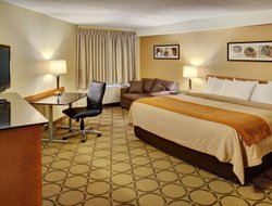 Pets-friendly hotels in Moncton