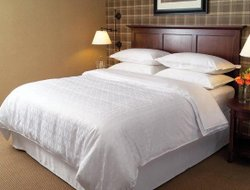 Business hotels in Arlington