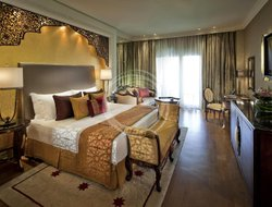 Pets-friendly hotels in United Arab Emirates