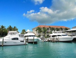 Pets-friendly hotels in Nassau