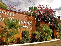 The most popular Puerto Escondido hotels