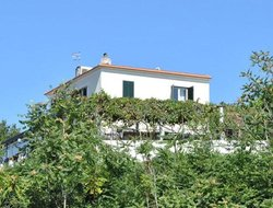Pets-friendly hotels in Torre del Greco