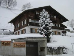 Grindelwald hotels with swimming pool