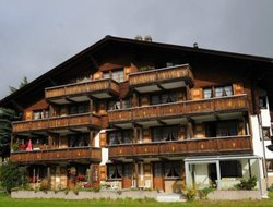 Pets-friendly hotels in Sedrun