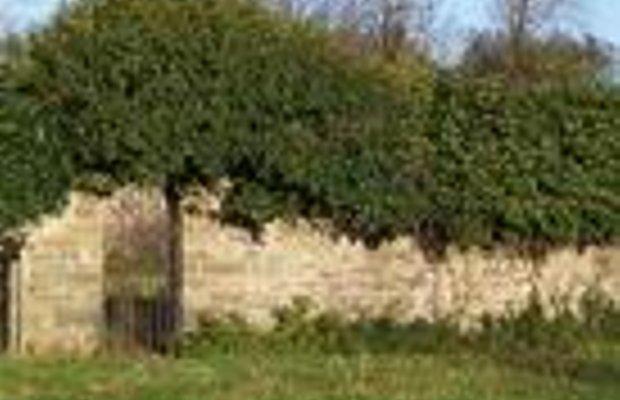фото Coxtown Manor 228047652