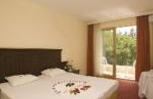 фото Palm D`or Hotel 228813739