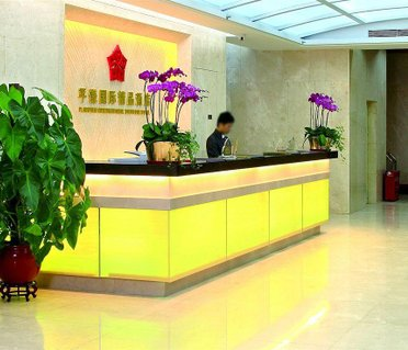 Foshan Plainvim International Boutique Hotel