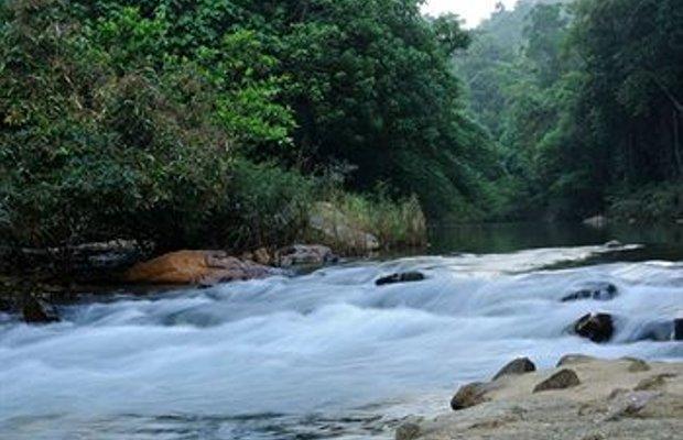 фото Khaosok Rainforest Resort 374471819