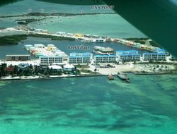 Pets-friendly hotels in Ambergris Caye Island