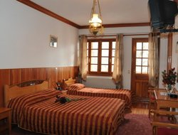 Top-10 hotels in the center of Metsovo