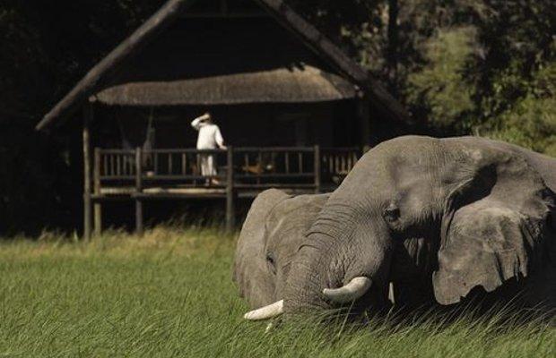фото Belmond Safaris 415475659