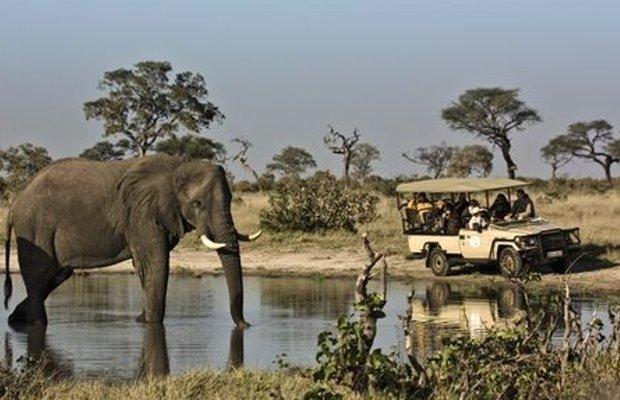 фото Belmond Safaris 415475661