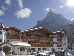 Pets-friendly hotels in Siusi