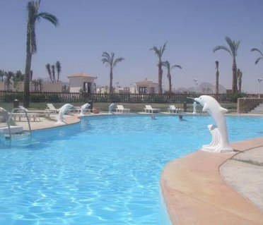Charming Sharm Apartment