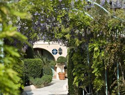 Pets-friendly hotels in St. Maxime