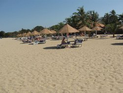 Pets-friendly hotels in Gambia