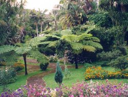 Pets-friendly hotels in Terceira Island