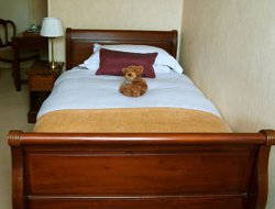 Pets-friendly hotels in Cheltenham