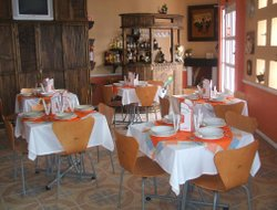 Pets-friendly hotels in Tlaxcala