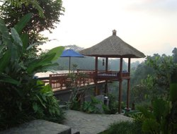 Ubud hotels with river view