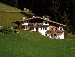 Pets-friendly hotels in Vorderlanersbach