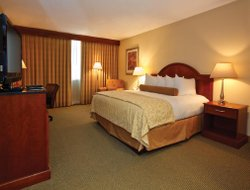 Business hotels in Altamonte Springs