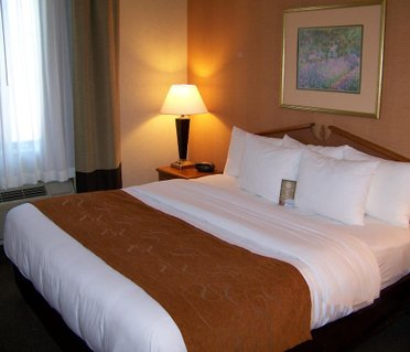 Comfort Suites Fishers/Indianapolis Northeast