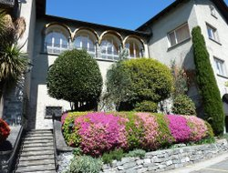 Pets-friendly hotels in Ascona