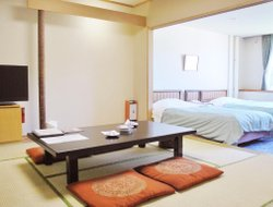 Top-8 hotels in the center of Jozankei