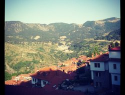 Pets-friendly hotels in Metsovo