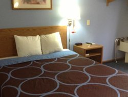Pets-friendly hotels in Fayetteville