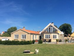 Pets-friendly hotels in Denmark