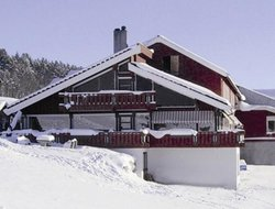 Geilo hotels with restaurants