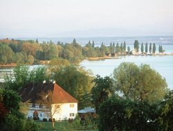 Pets-friendly hotels in Uhldingen-Muehlhofen