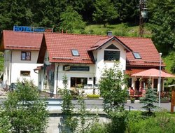 Pets-friendly hotels in Zella-Mehlis