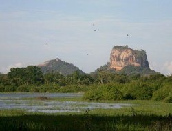 Sigiriya hotels with lake view