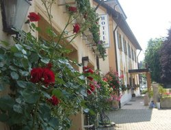 Pets-friendly hotels in Mindelheim