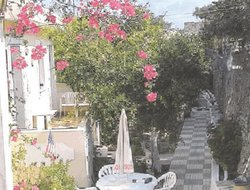 Pets-friendly hotels in Karpathos