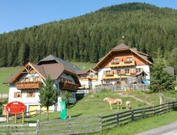 Pets-friendly hotels in Mauterndorf