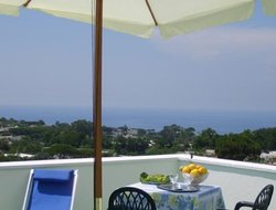 Pets-friendly hotels in Sant Angelo D'Ischia