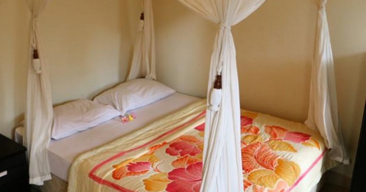 Citrus Tree Bed And Breakfast Kunyit