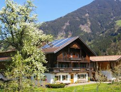 Pets-friendly hotels in Gattererberg