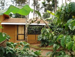 Pets-friendly hotels in Kalpetta