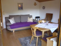 Pets-friendly hotels in Pipurg
