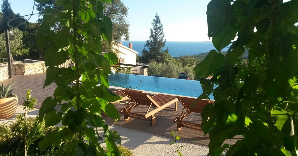 Apartment Olea with private endless pool Viskovici