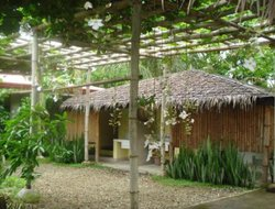 Pets-friendly hotels in Nasugbu